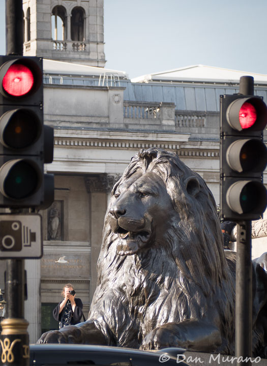 A bronze lion at the base of Lord Nelson's column at Trafalgar Square.