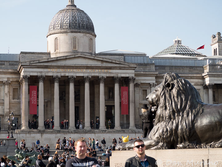 One of the Landseer Lions with the London Gallery in the background.